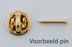 Voorbeeld Pin