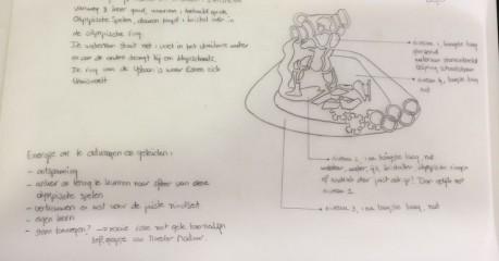schets met uitleg voor speld voor Esmee Visser