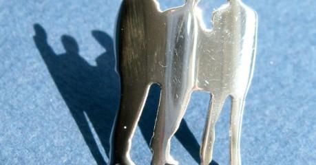 zilveren speld voor jubileum